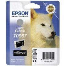 Epson T0967 Light Black
