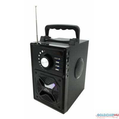 Media-Tech MT3166 BoomBox BT Next Black